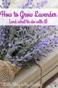 Decoration in French style - bunch of lavender covered with burlap and book bundle placed on vintage crocheted doily