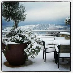"""Snowy morning in Vouni Panayia, here too wintery Cyprus at altitudes.    """"I adore this photograph"""""""