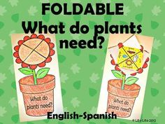 Your students will love learning about what plants need with this craft.It includes Spanish plant foldable too: Que necesitan las plantas pin-it-to-win-it 1st Grade Science, Kindergarten Science, Teaching Science, Science For Kids, Science Activities, Science Projects, Teaching Tools, Teaching Resources, Science Ideas