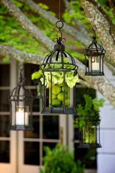 We could hang lanterns from the the trees right out back of the building  Courtyard Lanterns