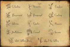 Claire's list of healing herbs. STARZ photo
