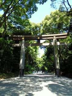 Visiting Meiji shrine