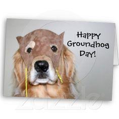 Golden Retriever Groundhog Day Card! Click the Zazzle link below!