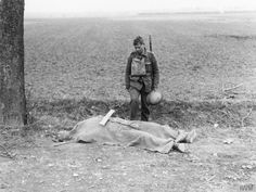 The body of a British soldier by the roadside awaiting burial. The wooden cross is already prepared. Near Domart, France - 3rd April 1918. via reddit