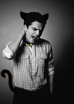Sebastian Stan 'cat' lol XD-----The Kitten Soldier b*tches...