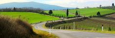 To drive or not to drive in Tuscany? That is the question. » At Home in Tuscany