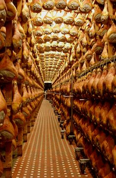 prosciutto-di-parma-production, Parma province of Parma, Emilia romagna region Italy-one of the amazing things you see on our Dolce Vita tour! Living In Italy, Medieval Castle, Toscana, Italian Recipes, Italian Ham, Italy Travel, Wine Recipes, Places To Visit, Around The Worlds