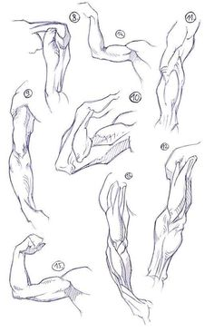 Exceptional Drawing The Human Figure Ideas. Staggering Drawing The Human Figure Ideas. Human Anatomy Drawing, Human Figure Drawing, Guy Drawing, Anatomy Art, Drawing Poses, Life Drawing, Arm Anatomy, Drawing People, Drawing Tips