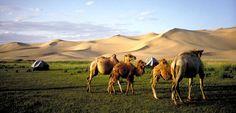 Mongolia www.hiddentrails.com