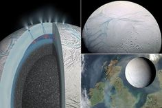 It might look like a frozen wasteland, but beneath the inhospitable surface of Saturn's moon Enceladus, life could be thriving in warm underground seas, scientists believe.    Nasa's Cassini spacecraft has picked up the first evidence that