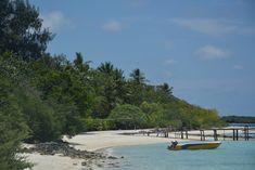 Chicken island visit  #wanderlust #islandlife #indianocean #travel #palmtrees #getaway #maldives #Thulusdhoo #seasonactivities