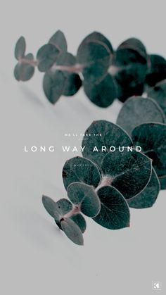 Long Way Around Lyrics by The Sweeplings - KAESPO