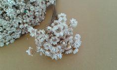 Buque de florzinha sempre viva  Cor natural  Flor seca  Para o toque perfeito ao seu artesanato, podendo ser utilizado em lembrancinhas, convites, decoração de festas, acabamentos, patchwork, scrapbook, etc. R$ 1,50