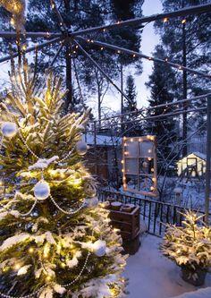Pihan jouluvalot – 12 tunnelmallista ideaa | Meillä kotona Christmas Home, Xmas, Gardening, Beautiful Christmas, Garden Plants, Holiday Decor, Outdoor, Home Decor, Decoration
