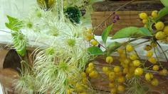 Berries #flowersinthefoyer #autumn #fall