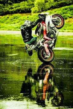Images and videos of motorcycle wheelie Motorcycle Outfit, Motorcycle Bike, Frases Bikers, Motocross, Moto Enduro, Gp Moto, Quad, Stunt Bike, Harley Davidson