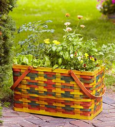 A large picnic basket holds a garden fit for feasts -- lettuce, bush tomato, basil, parsley, and edible flowers. Use a small brush and different colors of stain to create a plaid effect, then use a foam applicator to brush on a light coat of wood stain to unify and soften the colors. Before planting, line the basket with landscape fabric to hold the soil.