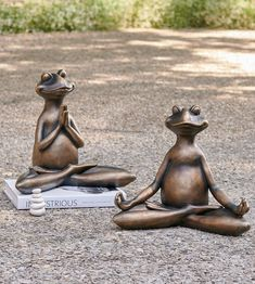 Molded from resin with the look of weathered bronze, our Yoga Frog Garden Statues are delightful for inspiring wide smiles and peaceful, garden moments. A great gift idea for the yogi in your life, too. Garden Arbor, Garden Oasis, Garden Path, Herb Garden, Outdoor Living, Outdoor Decor, Outdoor Rooms, Outdoor Gardens, Outdoor Furniture