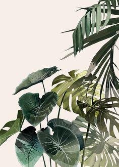 Botanic II - AGATA WIERZBICKA - Lumarte - art online