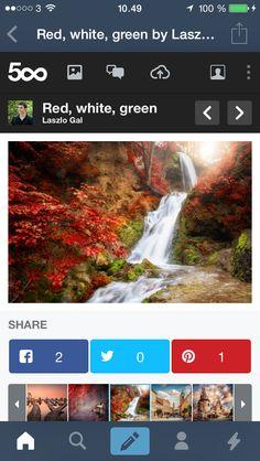 Tumblr browser chrome