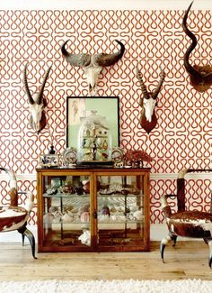 Animal skulls as home decorations in your interior