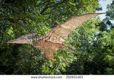 BRATISLAVA, SLOVAKIA - JUN 28: Realistic model of dinosaur Pteranodon at Dinopark on Jun