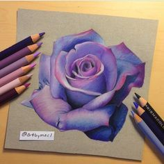 Violet rose drawing by artbymacl http://webneel.com/25-beautiful-color-pencil-drawings-valentina-zou-and-drawing-tips-beginners | Design Inspiration http://webneel.com | Follow us www.pinterest.com/webneel