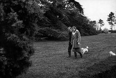 0 Ingrid BERGMAN with her husband Lars SCHMIDT walking their dogs