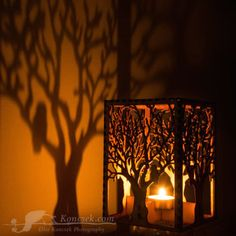 Barred Owl In Tree tea light luminary https://www.etsy.com/shop/EliseKoncsek?section_id=14559707