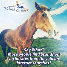 You heard it from the horses mouth! 41% of people have found out about new brands via social sites versus 34% finding out about new brands via internet search. A powerful shift in our digital content marketing world! #contentmarketing CLICK here if you need help with your online presence www.bluedressinternetmarketing.com