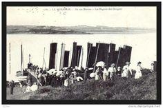 Sinagos à l'Ile aux Moines, aprés les régates de l'Ile d'Arz, c.1900