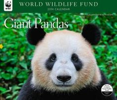 2014 Pandas WWF Wall Calendar