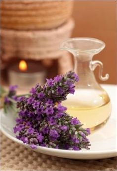 Feng Shui and Lavender Lavender is one of the most used scents in feng shui since it is known to promote good health and happiness.