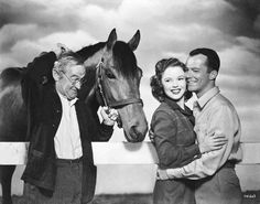 Sea Sovereigh played his sire Seabiscuit in the 1949 movie The Story of Seabisuit.