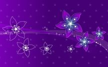 Purple Flowers Images Hd #HD % HD [High Definition] Images