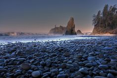 olympic peninsula | Rainforest, Peaks and Waterways of Cascadia | Rialto Beach