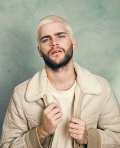 platinum hair with dark beard - Google Search   Hair Envy ...