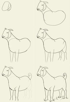 how to draw animals goat