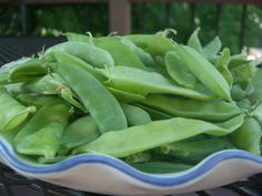 Check out this guide to growing great peas in your backyard garden!