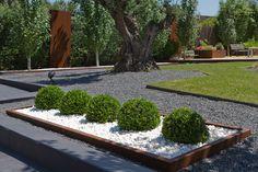 Jardin moderno de linea oblicua, deliminatado por pletinas de acero corten, lechos de grava basalto y de boj bola. Alineación de chopos con chapas de acero cortes arropando la zona infantil