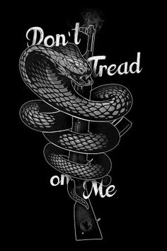 ca7b45052d7 2387 Best Don t Tread On Me! images