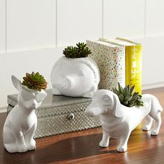 """Dachshund: 12"""" wide x 3.25"""" deep x 6"""" high Expertly crafted of resin. Succulents not included. Sold separately."""