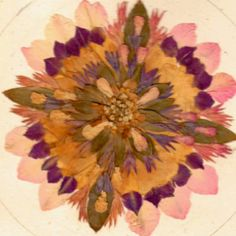 Another mandala with pressed flowers