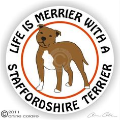 Life is Merrier With a Staffordshire Terrier Sticker - ha ha! Love it!