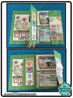 Life Cycle of Plants Flowers portfolio science lapbook journal thematic unit experiments hands on activities first second third fourth fifth grade 1st 2nd 3rd 4th 5th 6