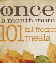101 Fall Freezer Meals: I just had a quick look but hallelujah, a blog site that is not crap food! I didn't see single can of Campbell's soup on here and she actually uses real potatoes, from the ground! fewf, there is hope!