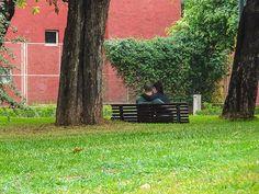 FOTOS SIN PORQUE: Amor en el parque Cityscape, fotografías, fotos, imágenes urbanas, love in the park, paisaje urbano, Pareja en el parque, Photography, photos, streetpotography