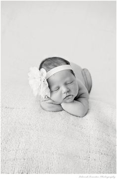 newborn photography newborn pose