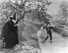 Wizard of Oz 1939 Judy Garland-Dorothy Gale, Ray Bolger-scarecrow, Margaret Hamilton-wicked witch of the west Wizard Of Oz Witch, Wizard Of Oz 1939, Wicked Witch, Margaret Hamilton, Scarlett O'hara, Vivien Leigh, Judy Garland, Walt Disney, Disney Art