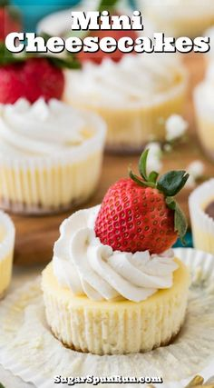 How to make the BEST MINI CHEESECAKES! Easy and adorable, this easy recipe is fast and delicious. Perfect for parties! #minicheesecake #partyfood #sugarspunrun Mini Cheesecake Recipes, Mini Desserts, Delicious Desserts, Raspberry Cheesecake, Oreo Cheesecake, Pumpkin Cheesecake, Mini Cheesecake Cupcakes, How To Make Cheesecake, 12 Cupcakes